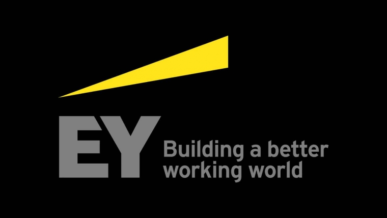 EY Unveils Public Finance