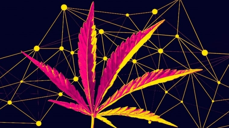 cannabis-blockchain