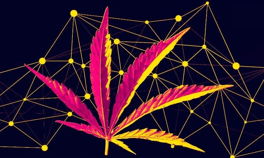 cannabis-blockchain